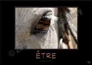 @ETRE-Verbe_OK_PostersGallery_copyr
