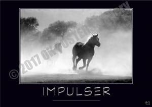 @IMPULSER-Verbe_OK_PostersGallery_copyr